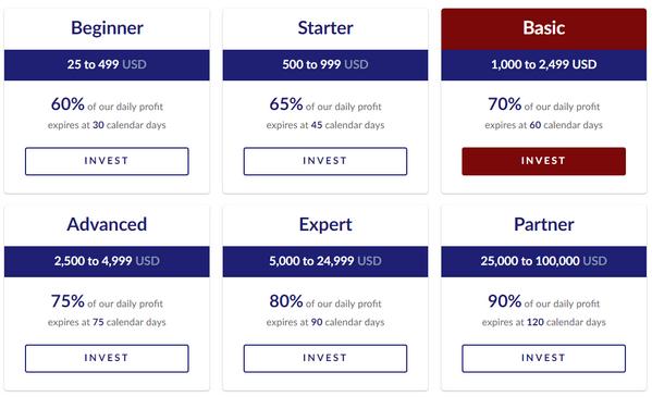 SportArb инвестиционные планы