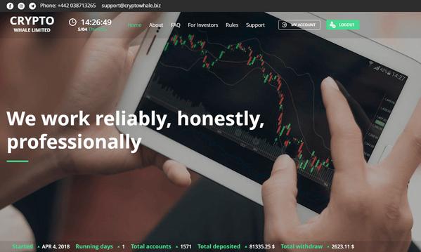 Cryptowhale biz - Отзывы и обзор Crypto Whale