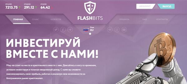 FlashBits pro - Отзывы и обзор
